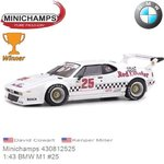 Modelcar 1:43 BMW M1 #25 | David Cowart (Minichamps 430812525)